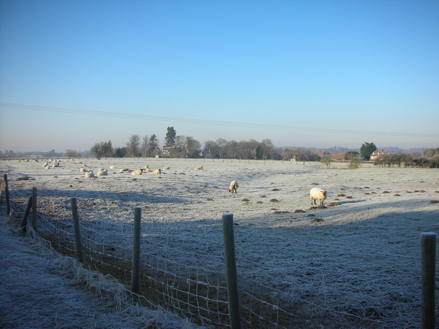 Field by Old Milverton