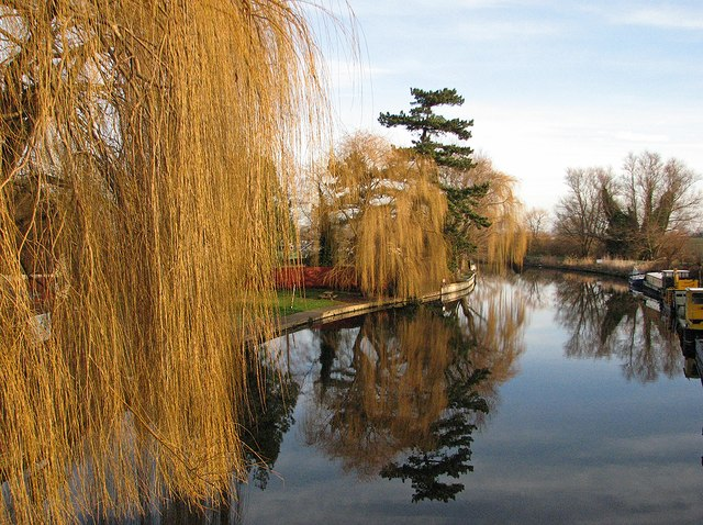 Clayhithe: willows and reflections