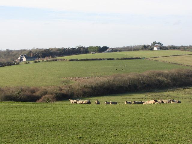 Fields near Llanmihangel