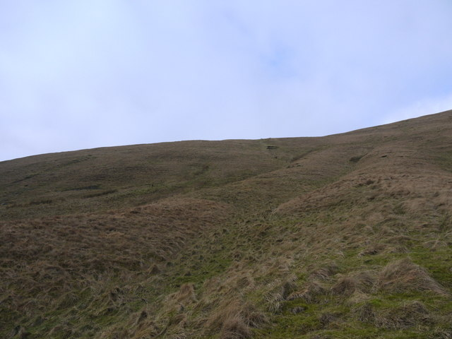 The SE slopes of Billscleuch Moor