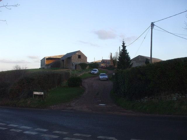 Home Farm, Cog