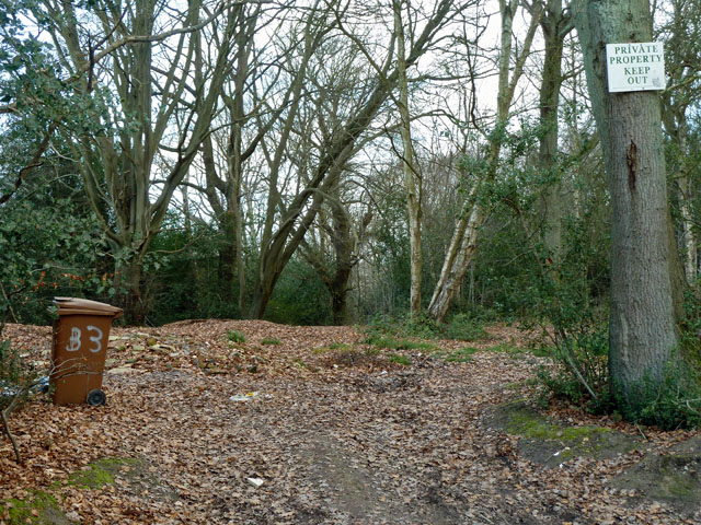 Way in to Brokes Wood