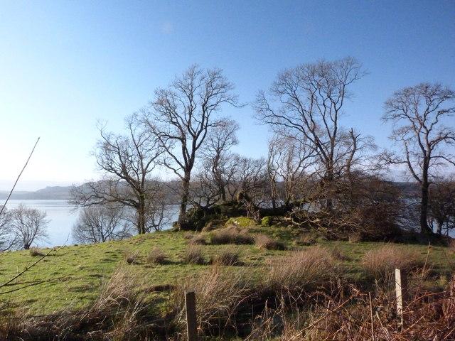 Loch Fyne shore near Barnacarry