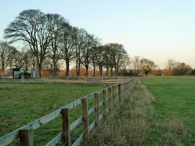 Fence and trees, Powder Mills