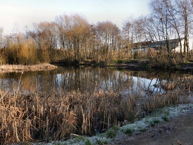 Flood Storage Basin, Timperley