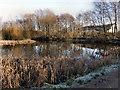SJ7789 : Flood Storage Basin, Timperley by David Dixon