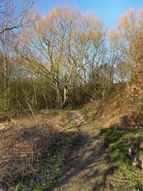 Path near Flood Storage Ponds