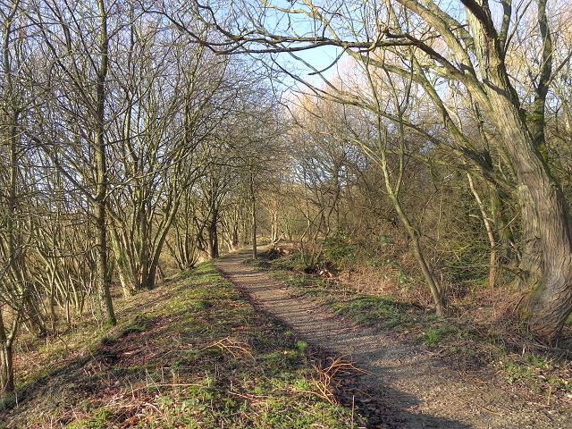 Footpath at Timperley Flood Storage Basin