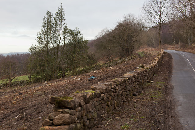 Renovated drystone wall on Pry Hills Lane
