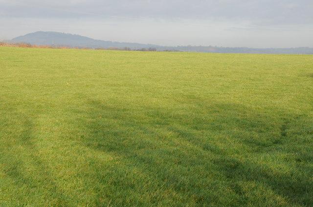 View to Edmund's Tump