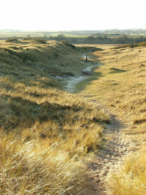 Path through the Dunes - Warkworth Beach