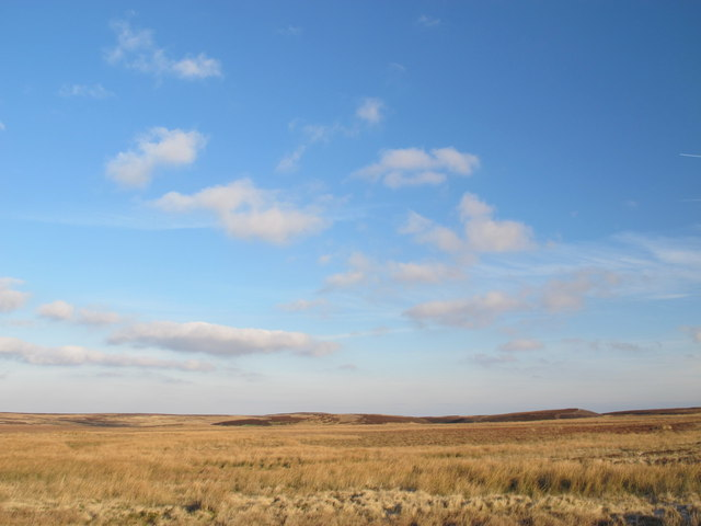 Moorland south of the Foumart Hills