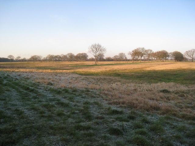 Carr landscape