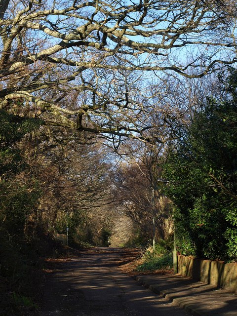 Core Hill Road, Sidmouth