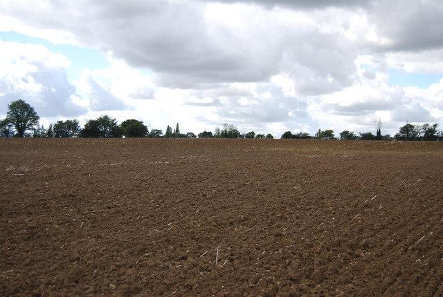 Large field near Akenham Hall