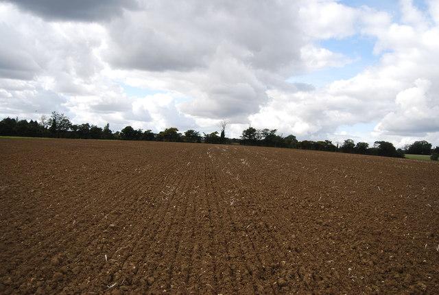 View north from the bridleway near Akenham Hall