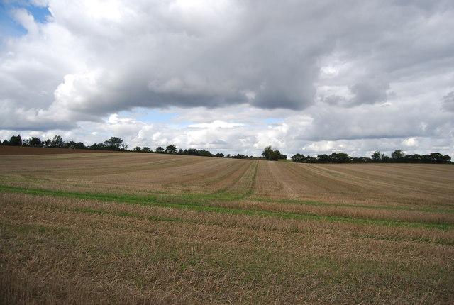 Farmland near Bower Farm