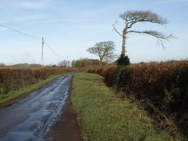 Road to Sampford Courtenay station