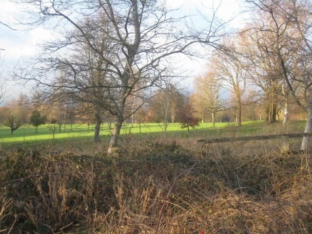 Looking onto Basingstoke golf course