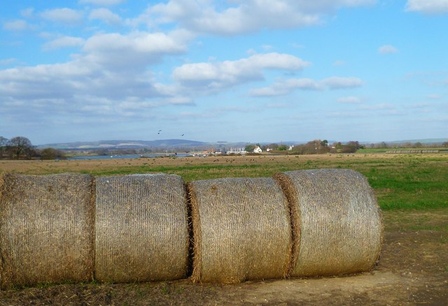 Field with bales at New Barn