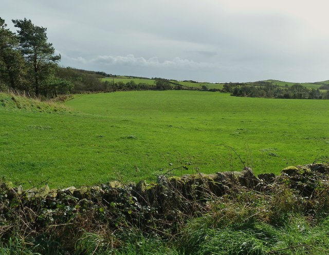 The fields opposite Colvend Church