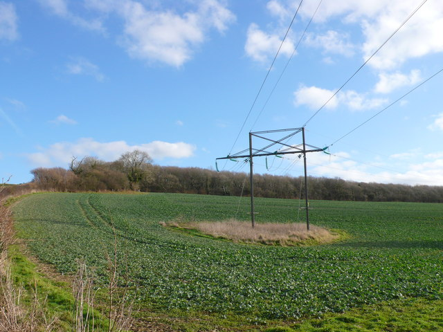 Power Line at Hedge End