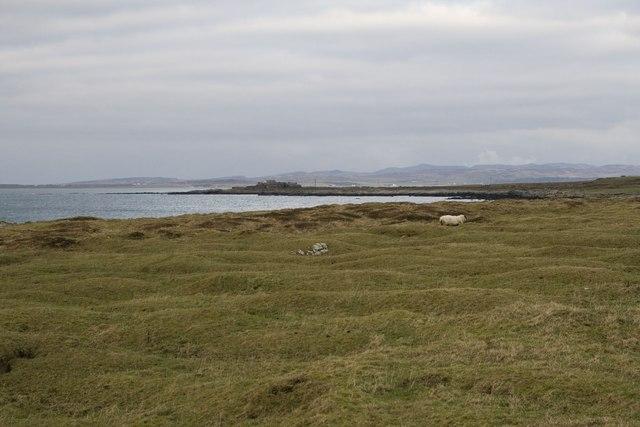Rough grazing near Gartbreck, Islay