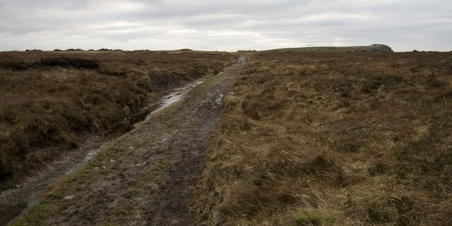 Track near Laggan, Islay