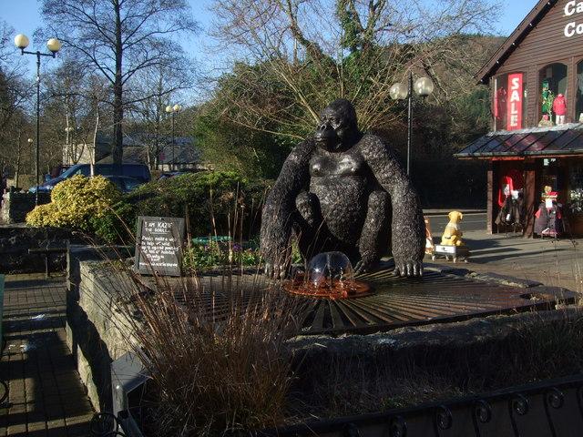 Kazie the gorilla