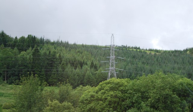 Pylon in the trees