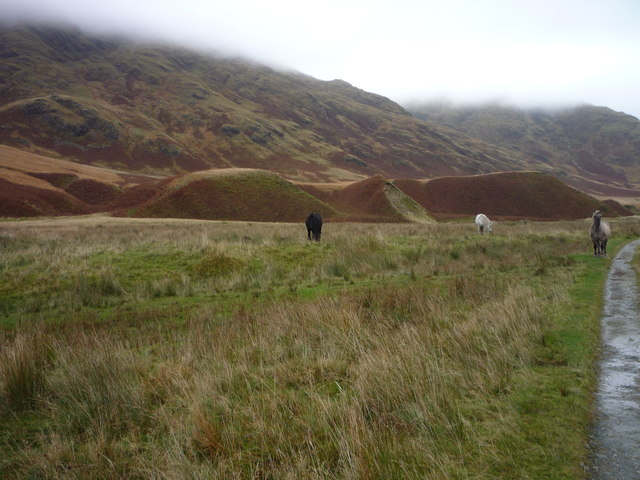 Horses and hummocks on Hallowe'en in Srath a' Ghlinne