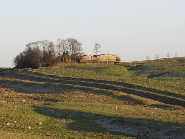 The Vallum west of Shield on the Wall (2)