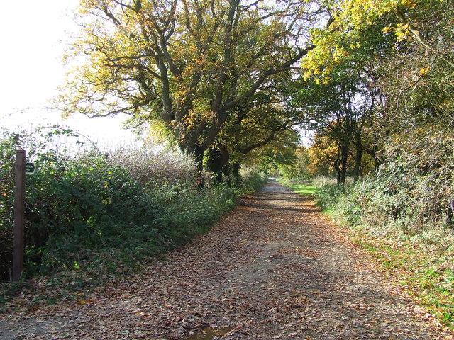 Track To Hall Farm