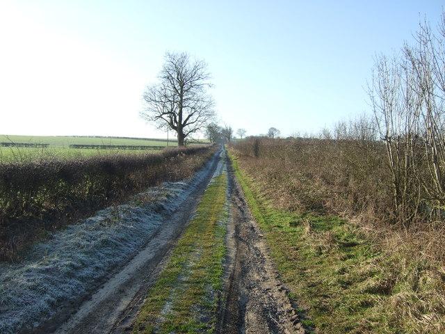 Track to Haggas Hall (footpath)