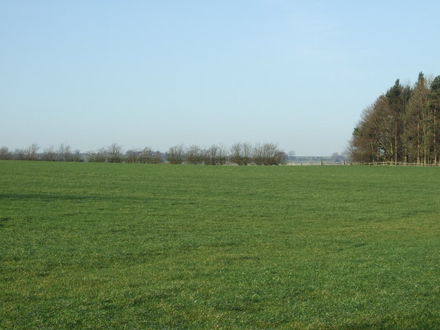 Farmland off the A61