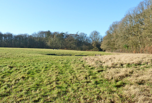Field between Browns Lane and Shire Lane