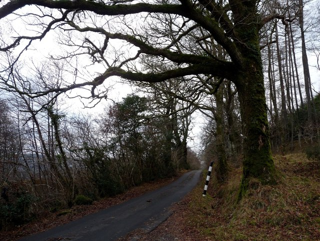 North Shian road to Port Appin