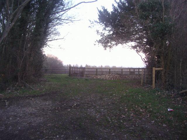 View from Hogden Lane