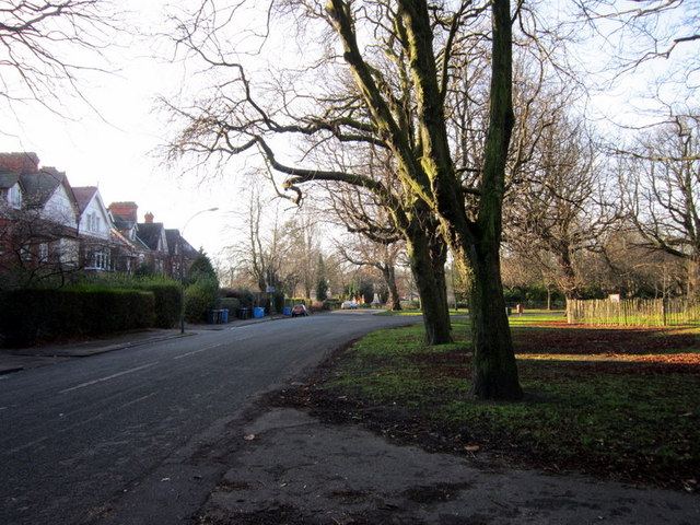 Pearson's Park (road) at Pearson's Park