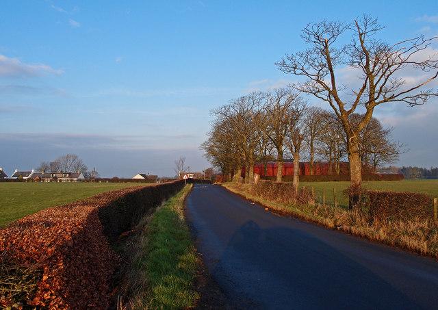 Minor Road near Knockendale Farm