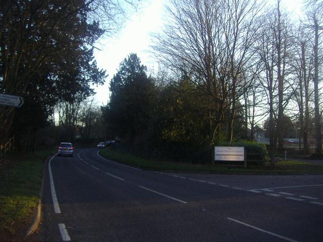 Cobham Road by the Yehudi Menuhin School