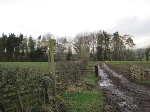 Muddy Byway and Path  above West Land Ends