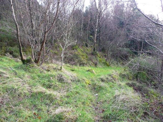 Paths at Bull Fall, Cragg Vale