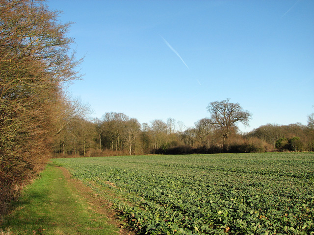 Footpath to Park Wood, Easton