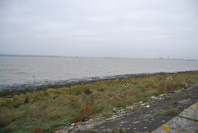 Narrow salt marsh, Thames Estuary