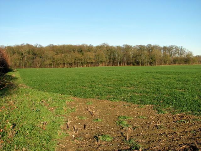 View towards the Skouldings, Easton