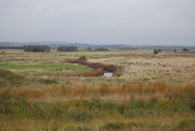 Ditch, Cliffe Marshes