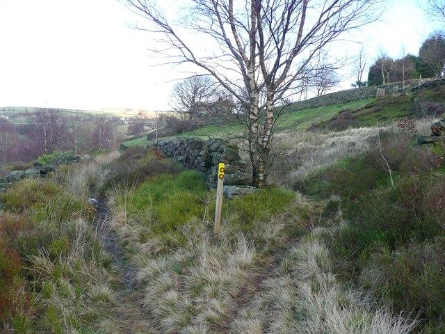 Waymarked paths near Owlet Hill