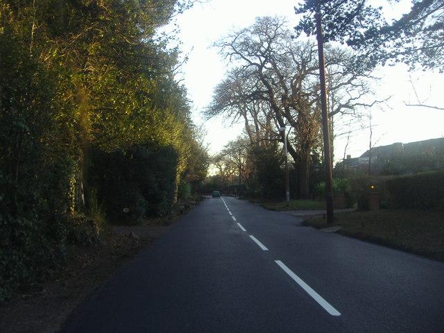 Fairmile Lane, Cobham