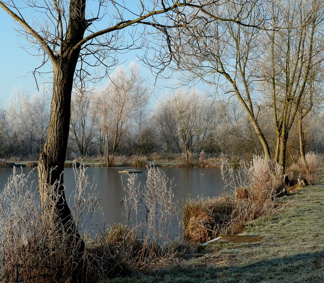 Frosty morning by the fishing lake